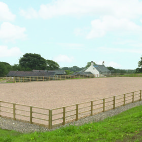 fell-side-farm-equine