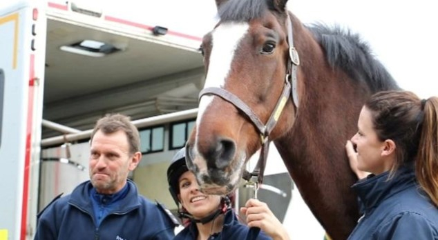 Redland the Police Horse set for retirement